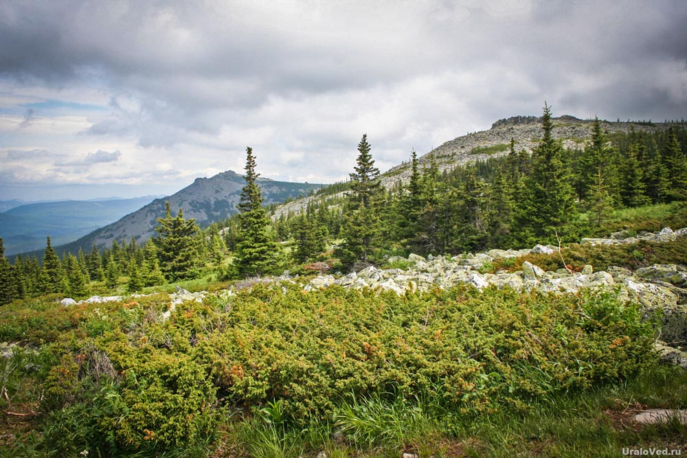 Горы Большое и Малое Седло в Ставропольском крае — фото, описание ... | 667x1000