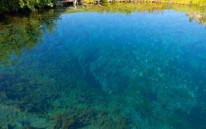 Голубое озеро (Зянгяр куль) Башкирии