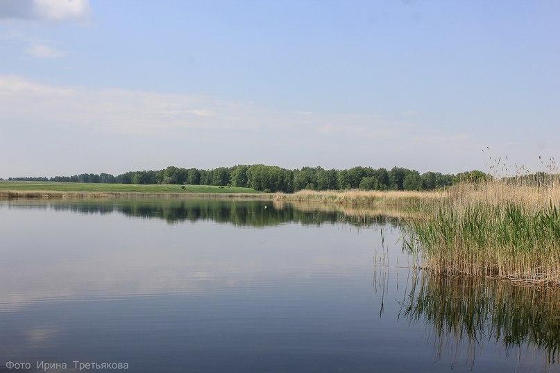 Озеро Луданное, Юргамышский район Курганской области