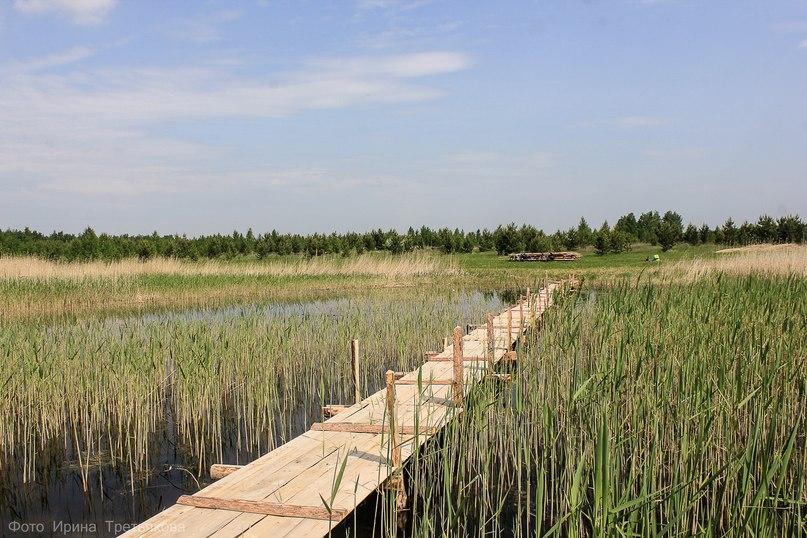 Мостик на озере Луданное