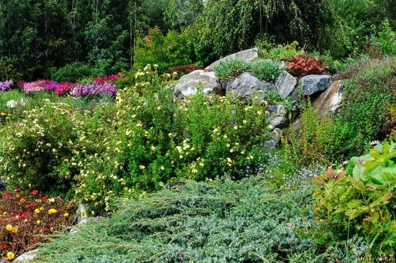 Соликамский ботанический сад