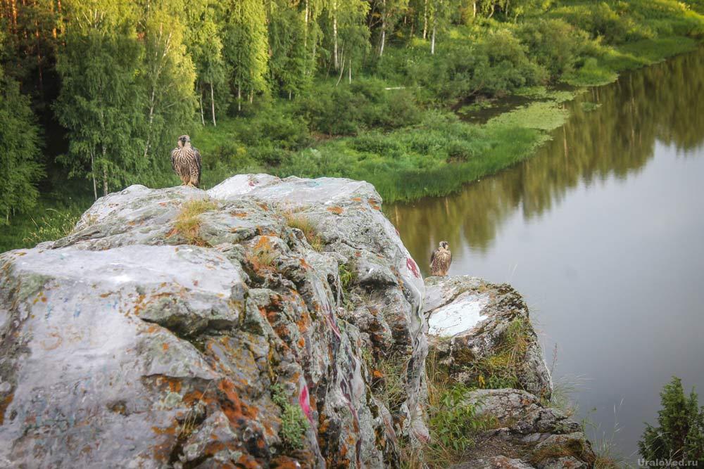 Живописное село Чусовое