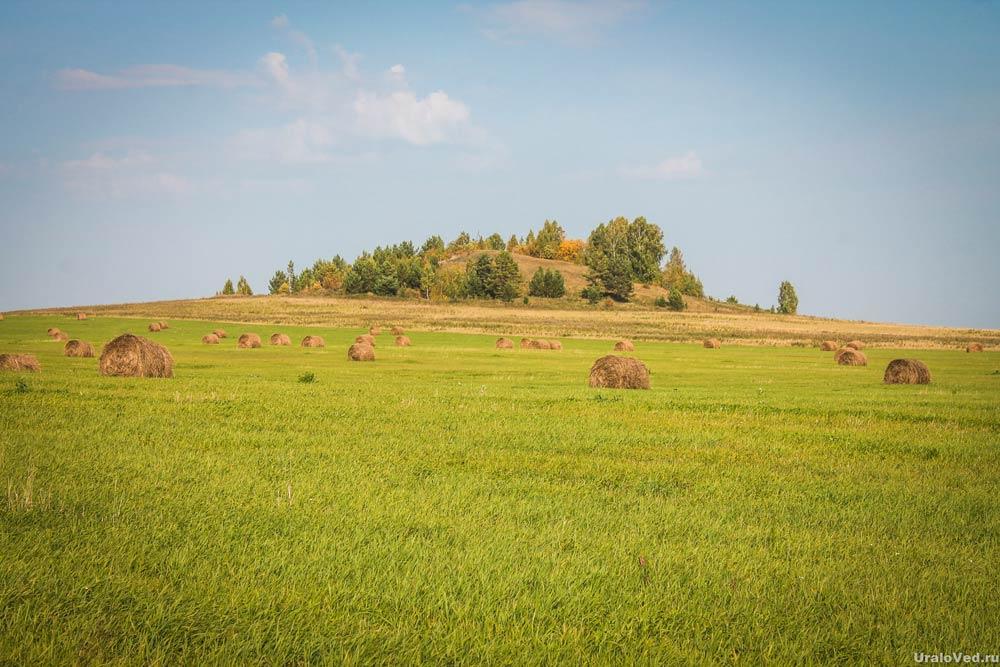 Гора Мирская