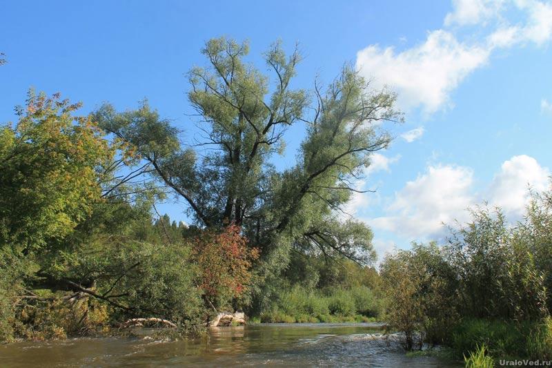 На реке Серге