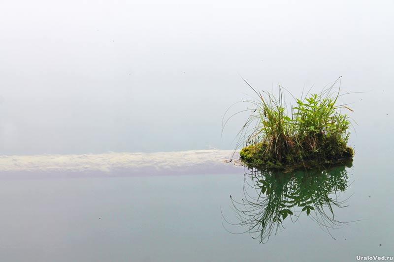 Бревно на озере Бездонном